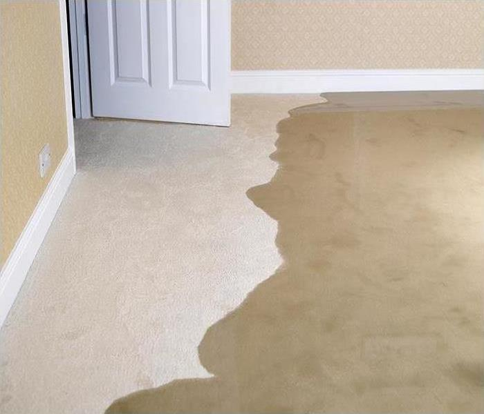 puddle of water on carpet in bedroom