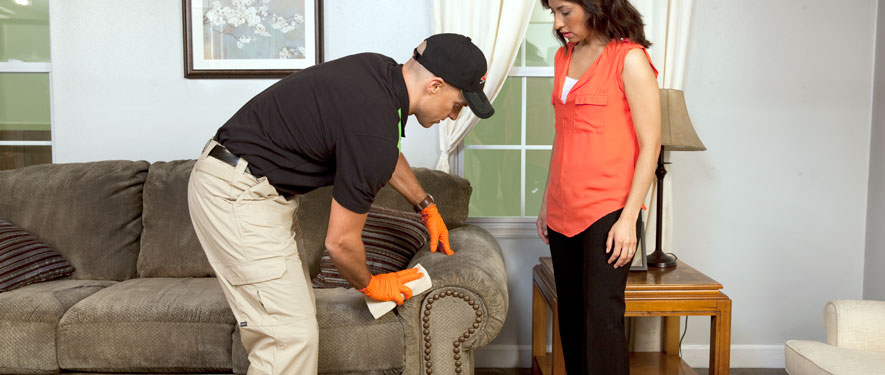 Elkton, MD carpet upholstery cleaning