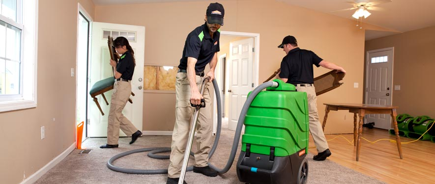 Elkton, MD cleaning services
