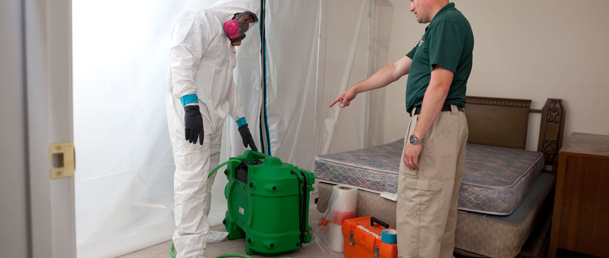 Elkton, MD mold removal process